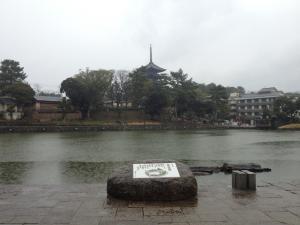 sarusawa0309_convert_20120309120502.jpg