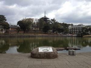 sarusawa0313_convert_20120313105637.jpg