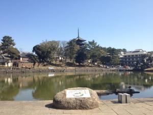 sarusawa0314_convert_20120314104826.jpg