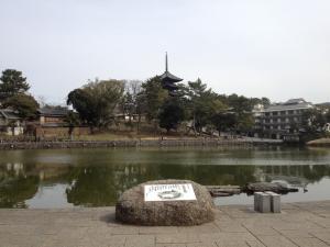 sarusawa0316_convert_20120316112224.jpg