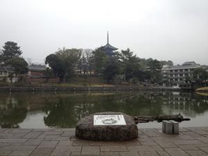 sarusawa0318_convert_20120319105612.jpg