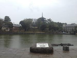 sarusawa0323_convert_20120323105216.jpg
