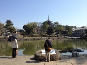 sarusawa0327_convert_20120327103027.jpg