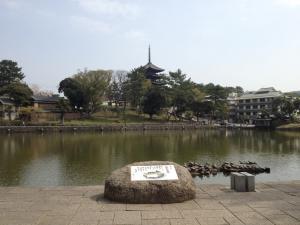 sarusawa0413_convert_20120413104437.jpg