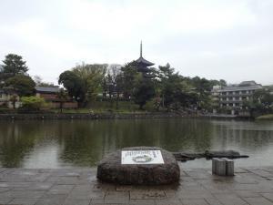 sarusawa0420_convert_20120420105355.jpg