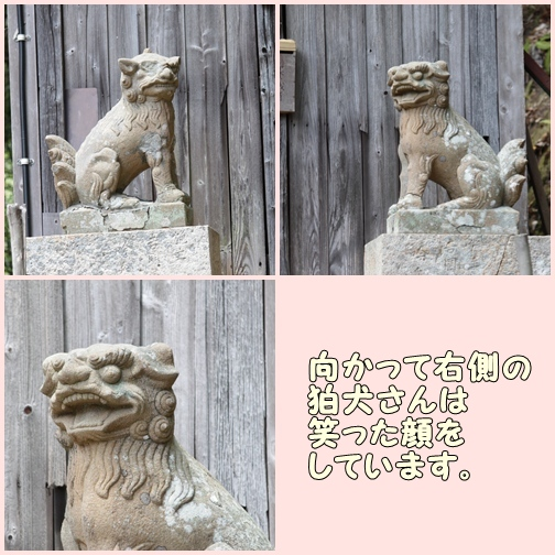 page7_20110508162152.jpg