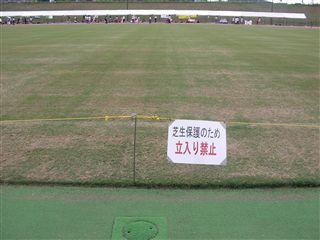 やはり進入禁止の大事な芝生…