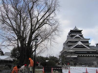 熊本城は銀杏城ともいう