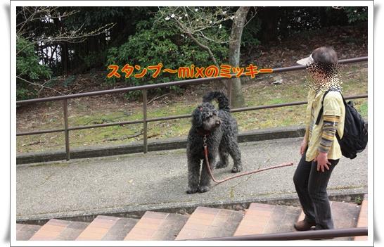 050_20120419002121.jpg