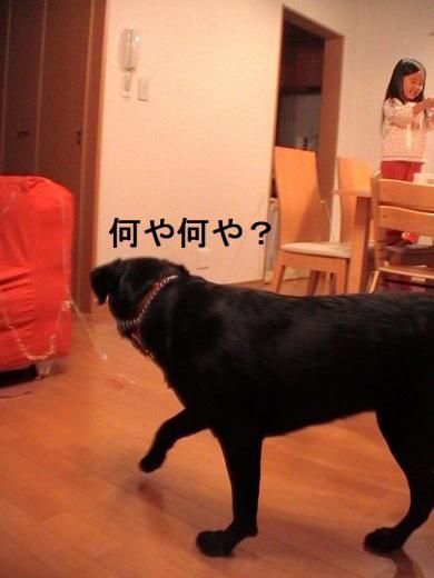 Mery Christmas~ROMI家バージョン~ (11)