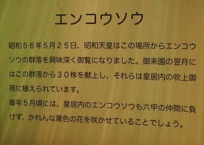 mini_2213_kannbannkakudai.jpg