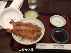 エビカツ丼