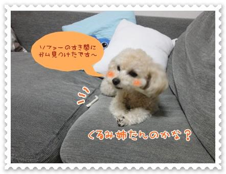 a10_20120226143907.jpg