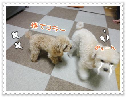 a20_20120320134405.jpg