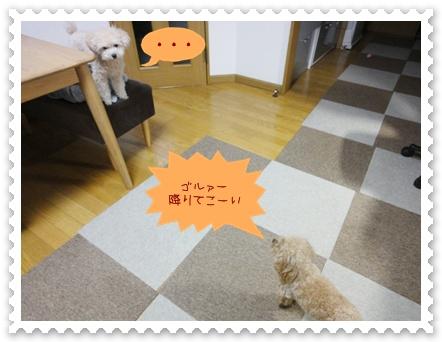 a21_20120320134403.jpg