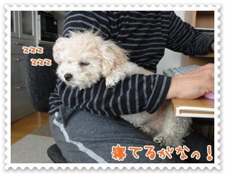 a21_20120322200627.jpg