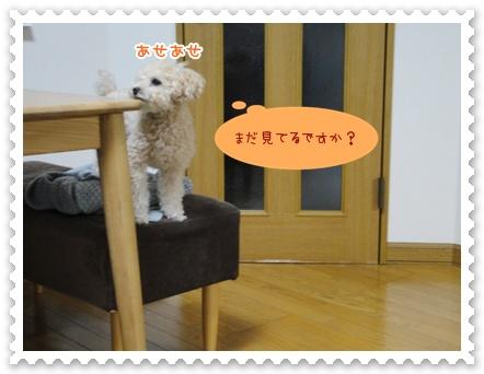 a23_20120320134403.jpg