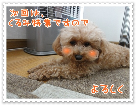 a24_20120322200627.jpg