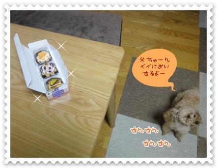 a4_20120419200136.jpg