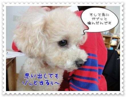 a7_20120214204646.jpg