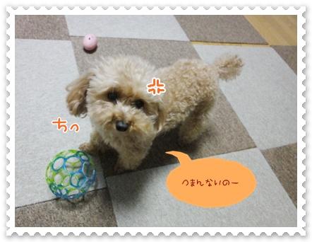 a8_20120328155341.jpg