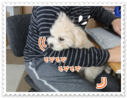 a9_20120322200437.jpg