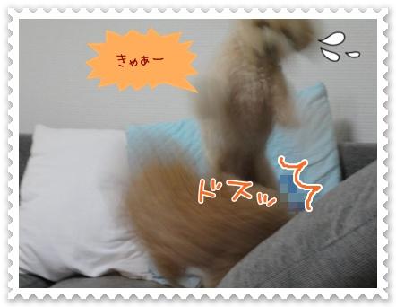 b14_20120325233706.jpg