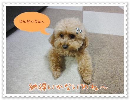 b19_20120325233755.jpg