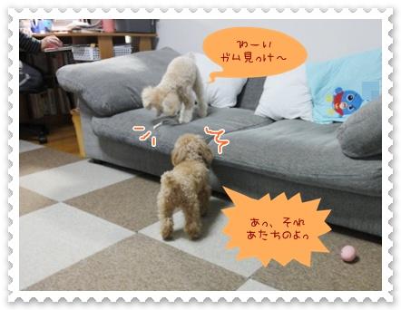 b1_20120325233424.jpg