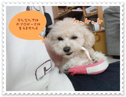 b2_20120228204053.jpg