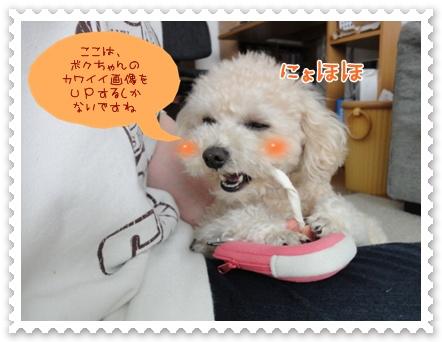 b3_20120228204053.jpg