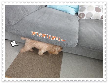b5_20120307155943.jpg