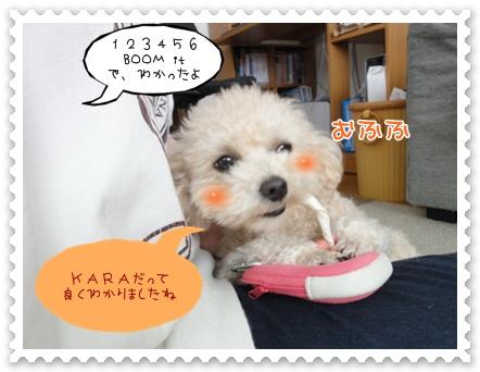 b9_20120228210325.jpg