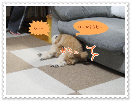 c3_20120331122946.jpg