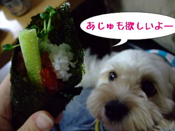 食べたいよー
