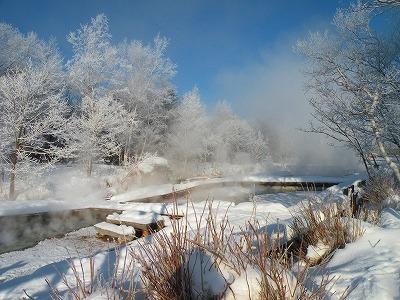 川湯の朝の樹氷