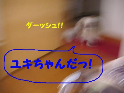 12-2-5_20071222144013.jpg