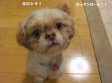 裕也 内田に憧れてんねん♪ヨロシク~!