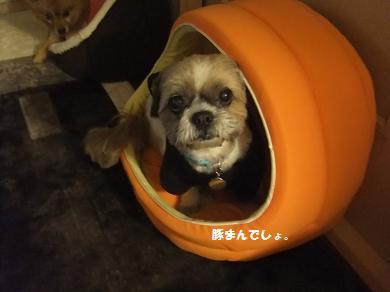 関西圏では豚まんって言うんやで~