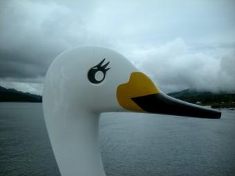 山中湖舟遊びa1
