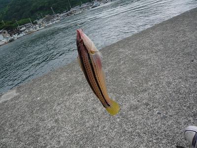2009 伊勢 (35)