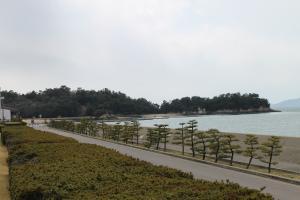 沙弥島全景