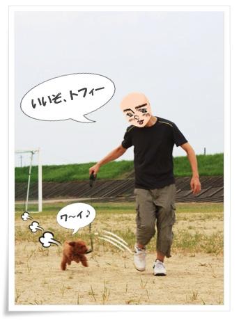 走るトフィー♪