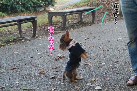 0287_20091023100107.jpg