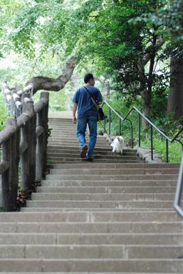 多摩川台公園へ