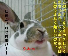 banner0710.jpg