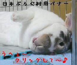 s090909bana1.jpg