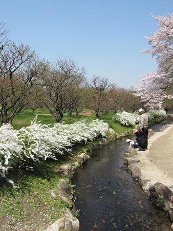 万博公園06