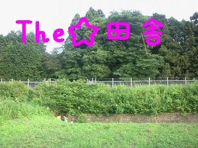 画像-0227②