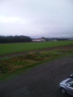 薫風舎 一面畑